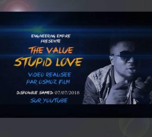 the value stupid love