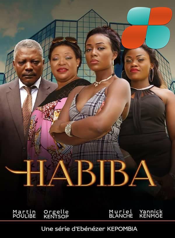 L'affiche de la série